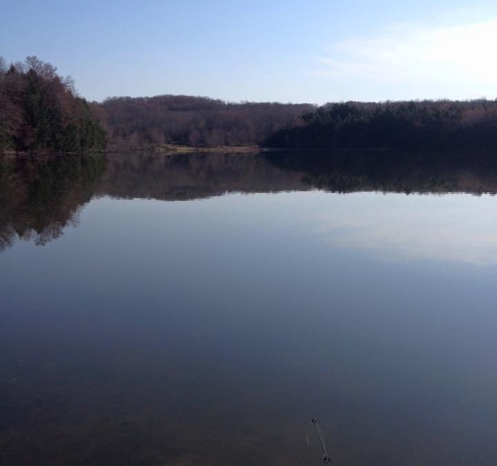Cook's Pond