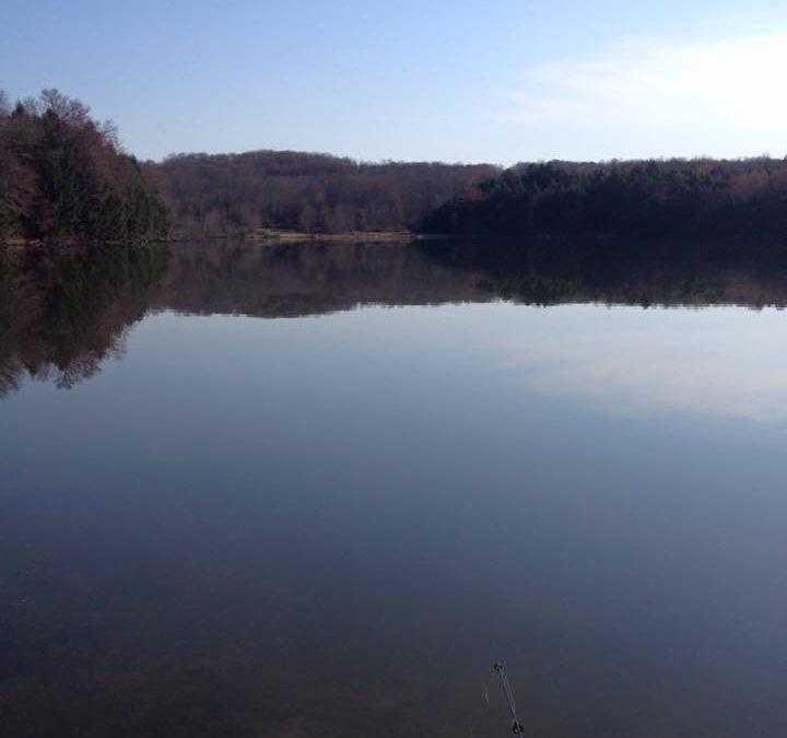 Cooks Pond